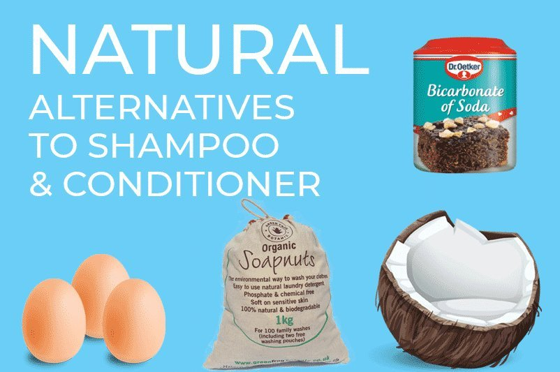 An image showing coconut oil, eggs, soap nuts and bicarbonate of soda for the  article by heatandplumb.com titled natural alternatives to shampoo and conditioner