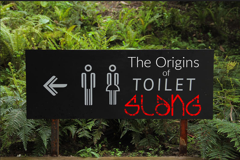 This image shows a toilet sign from the article  The Origins of Toilet Slang on the heatandplumb.com blog