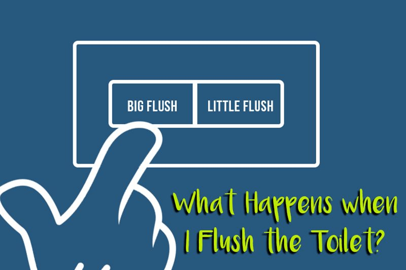 A featured image for the blog post by heatandplumb.com for What Happens When I Flush the Toilet