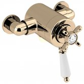 Bristan 1901 Exposed Concentric Shower Valve Only - Gold