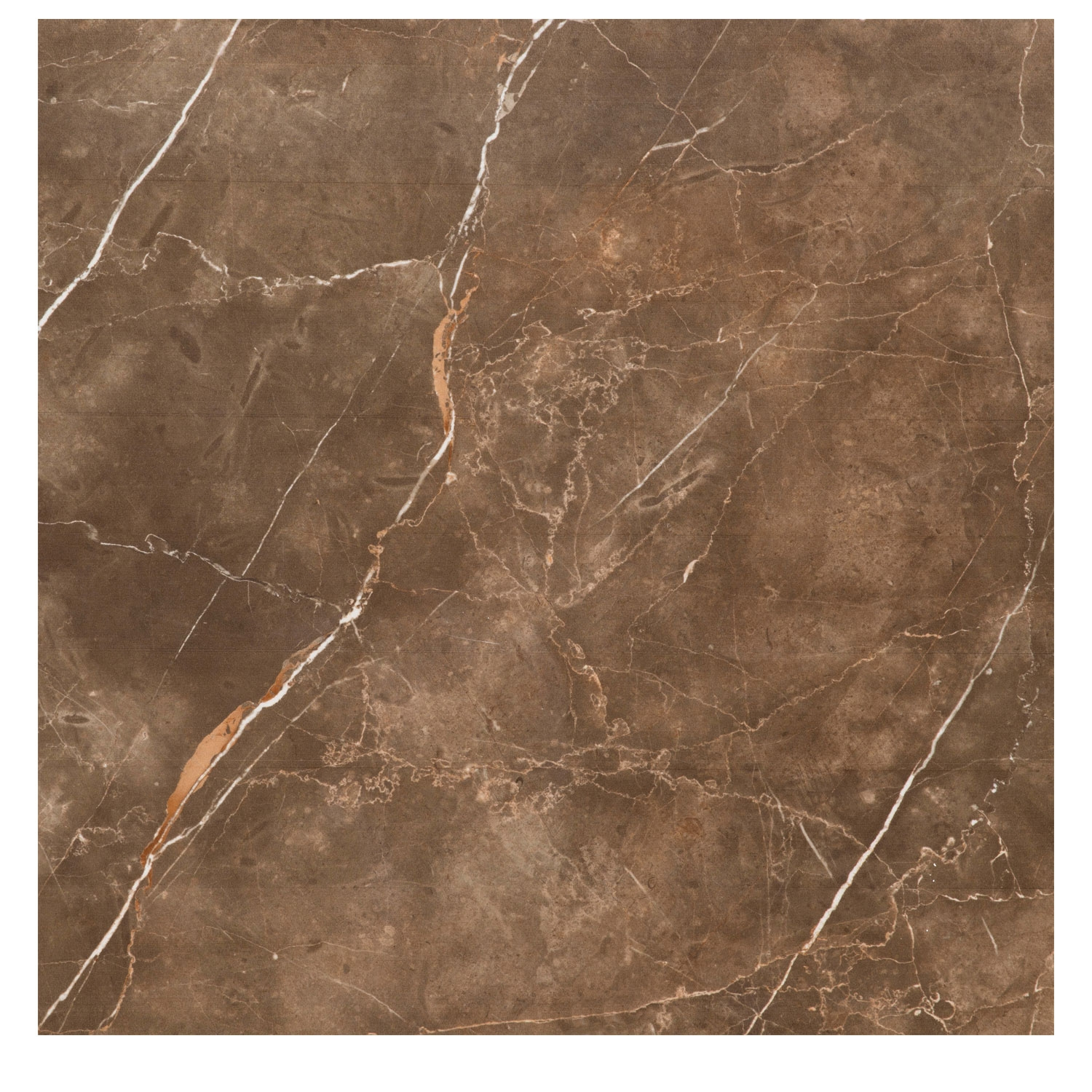 RAK Atlantis Marble Porcelain Polished Tile - 595mm H x 595mm W - Brown (Box of 4)
