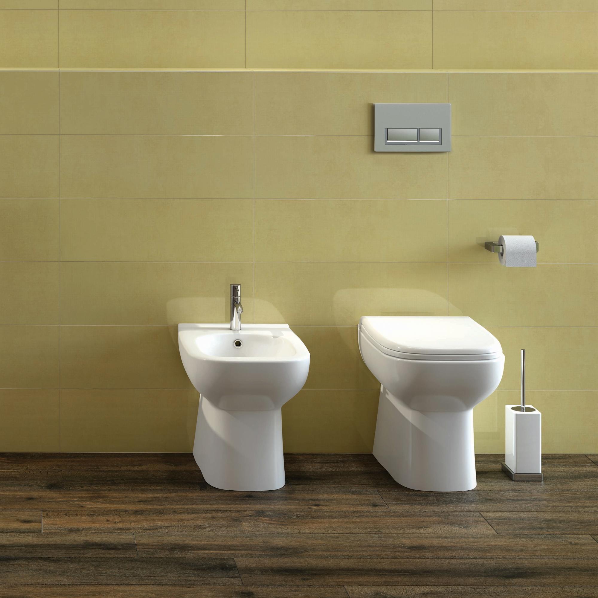 RAK Origin Back to Wall Toilet 500mm Projection - Soft Close Seat